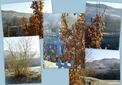 fin 2011 - début 20121.jpg